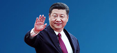 Xi pays state visit to DPRK