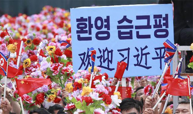 People welcome Xi Jinping in Pyongyang