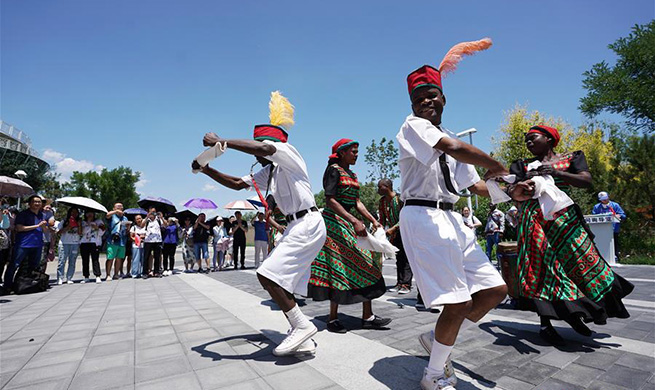 """Malawi Day"" event kicks off at Beijing horticultural expo"