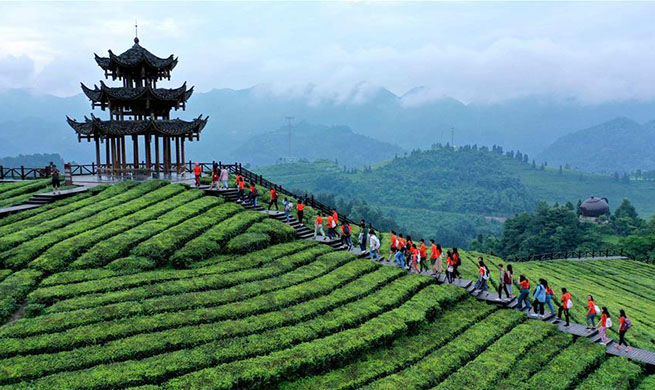 Tourists go sightseeing at tea garden in Enshi, central China's Hubei