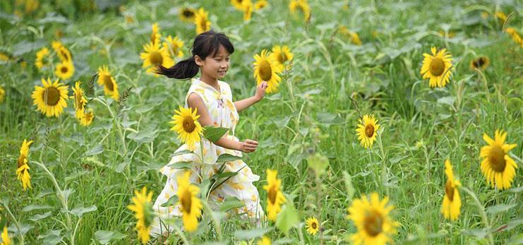 Sanjie Town in Anhui develops rural tourism to boost rural development