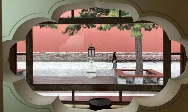 Summer scenery of Palace Museum in Beijing