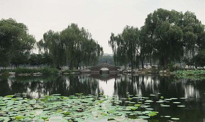 Summer scenery in Beijing