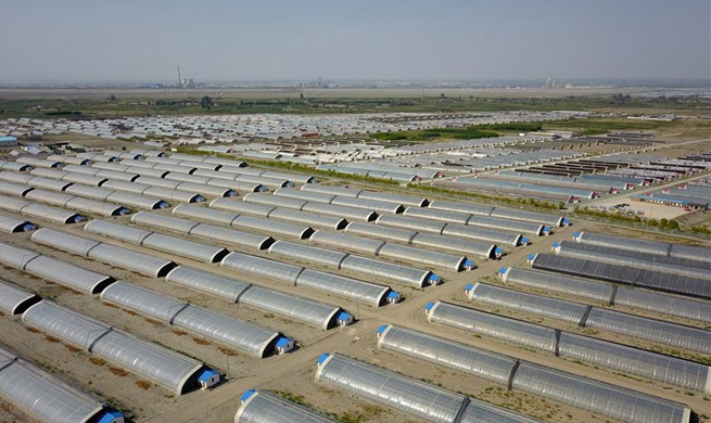 Greenhouses set up in desert to develop eco agriculture in NW China's Gansu
