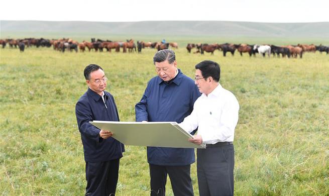 Xi makes inspection tour in Shandan, Gansu