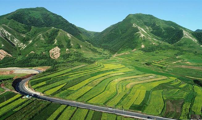 Eco China: Ningxia, first in China to make headway in reversing desertification
