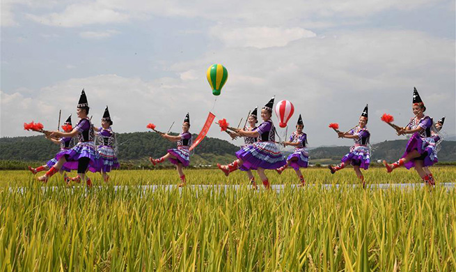 People celebrate harvest in China's Yunnan