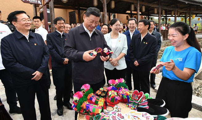 Xi goes to central China on inspection tour