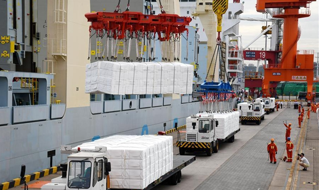 Tian Xi vessel arrives at Qingdao Port after wrapping up voyage through Arctic shipping route