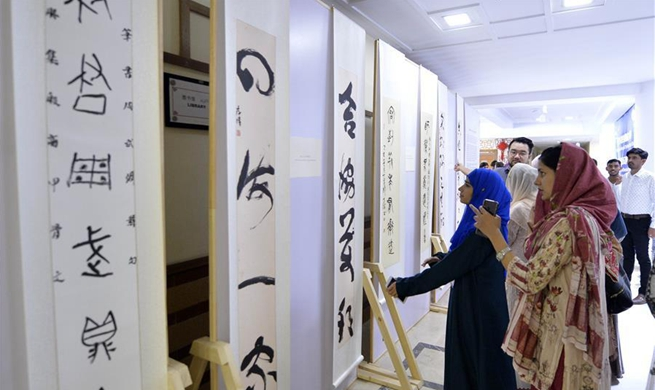 China-Pakistan Joint Painting and Calligraphy Exhibition held in Islamabad