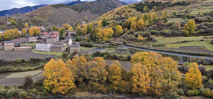 Autumn scenery of Xinduqiao Town in Kangding, China's Sichuan