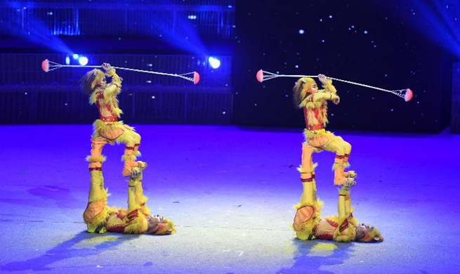 17th China Wuqiao Int'l Circus Festival held in China's Hebei
