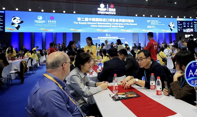 Supply-demand Matchmaking Conference of 2nd CIIE held in Shanghai