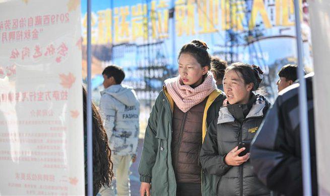 Job fair held in Lhasa, China's Tibet
