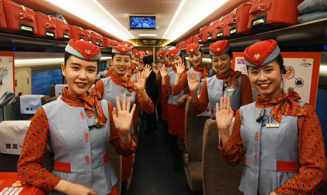 Tourism experience high-speed train starts journey in E China's Shandong