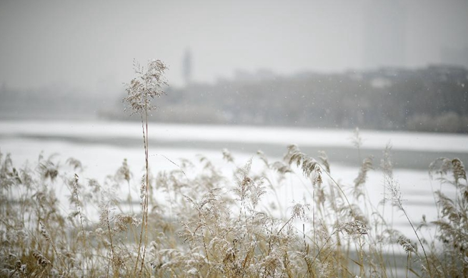 China's Yinchuan embraces first snowfall