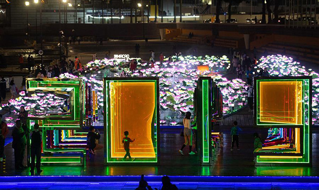 2019 Macao Light Festival held in south China