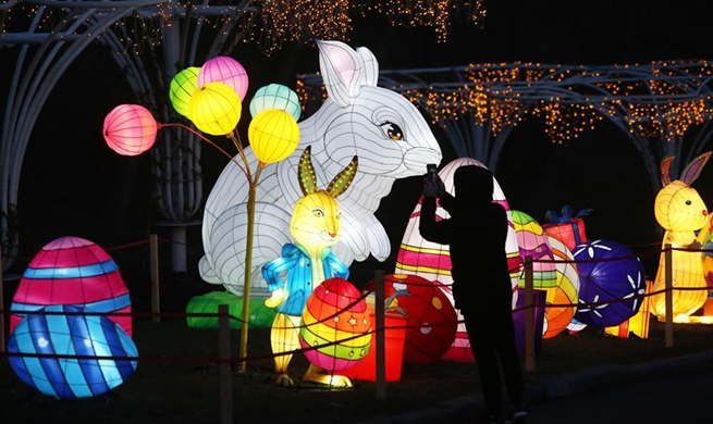 Festival of Chinese lanterns held in Kiev to celebrate upcoming New Year
