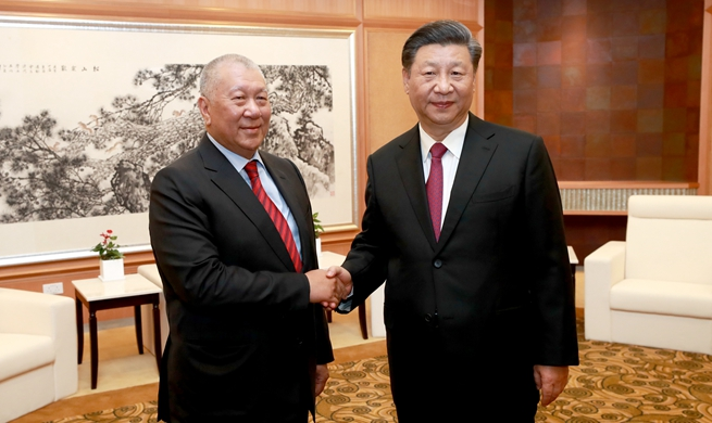 President Xi meets vice chairman of CPPCC National Committee Ho Hau Wah