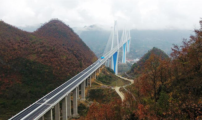 Mega bridge opens to traffic in southwest China