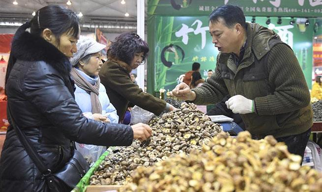 Shopping festival to greet Spring Festival held in Chengdu, SW China