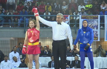 Chinese team wins annual China-Egypt Wushu Sanda championship