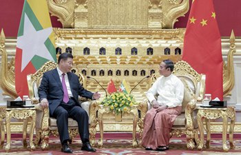 "Xi stresses importance of China-Myanmar ""Paukphaw"" friendship"