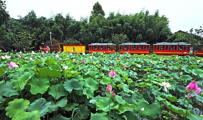 Rural per capita disposable income in Zhejiang reaches 29,876 yuan in 2019