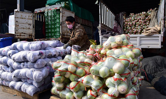 Various measures taken across Henan to ensure sufficient supply of agricultural products