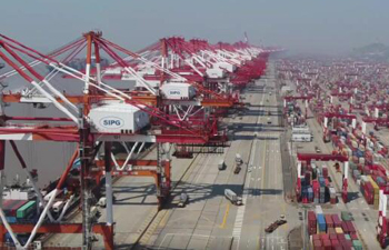 Port in Shanghai resumes busy operation