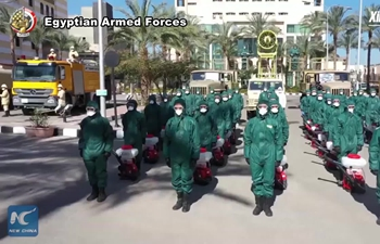 Egypt's Armed Forces carry out sterilization campaign in Cairo