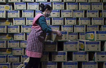 Price, supply stable at agricultural products trade market in Xiangyang