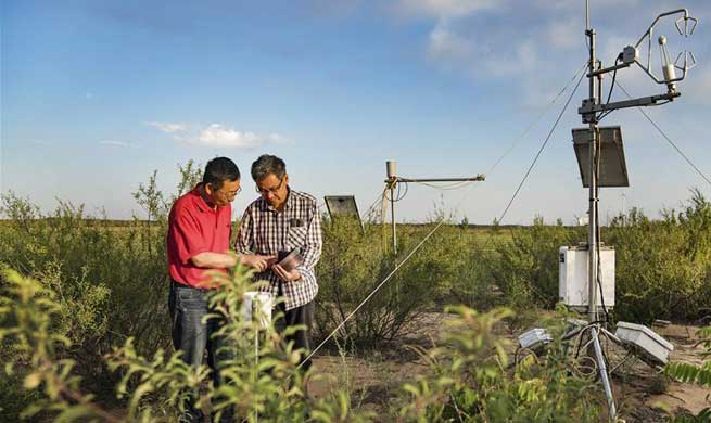 Local villager develops ecological planting to control sand, preserve environment