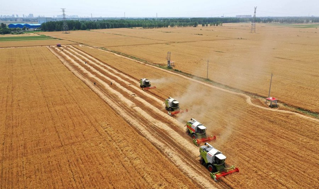 Changes of China's agricultural production in the past decades
