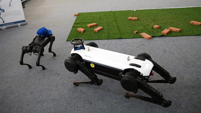 Two quadruped robots stage performance after repair at CIFTIS