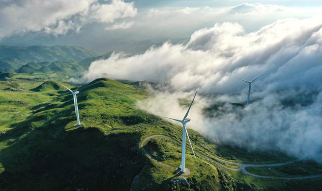 """Xinhua Headlines: China-Europe climate efforts pave way for world's """"green recovery"""""""