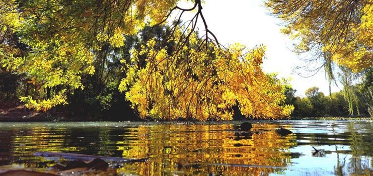 Autumn view in Beijing