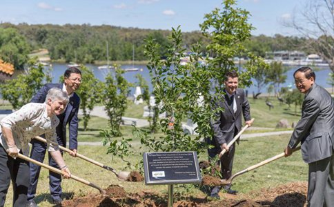 Tree for friendship with China planted in Australian capital