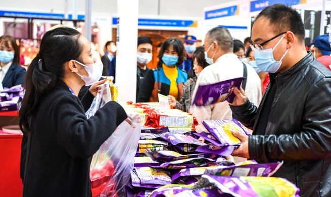 Public open day of 17th China-ASEAN Expo kicks off