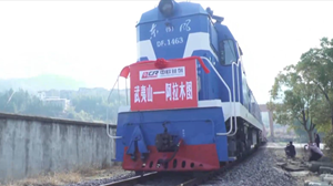 First Wuyishan international freight train departs from China's Fujian