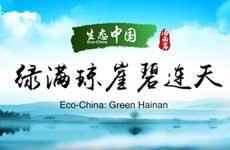 Eco-China