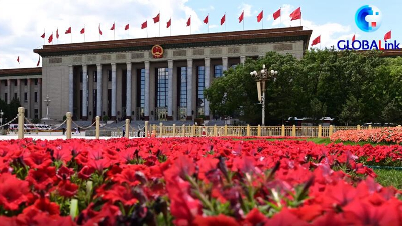GLOBALink | Xinhua Special: Themes Covered by Xi at China's Two Sessions