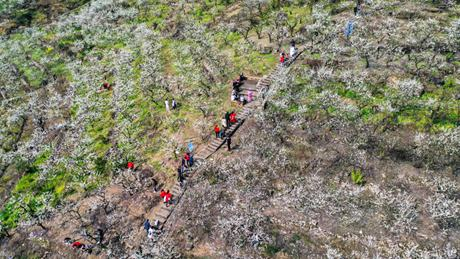 People view early spring scenery at Yinhe Village in Chongqing