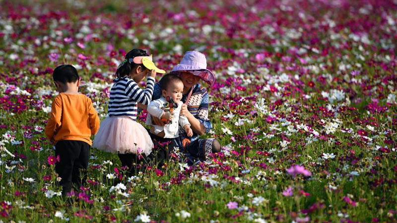 People take photos amid blooming flowers in Haikou, south China's Hainan