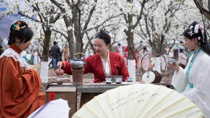 People enjoy pear blossoms in Sanqiang, Sichuan