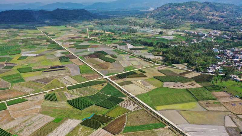In pics: agricultural base in Hainan, S China