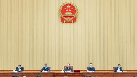 Chinese lawmakers submit 8,993 proposals to legislative session