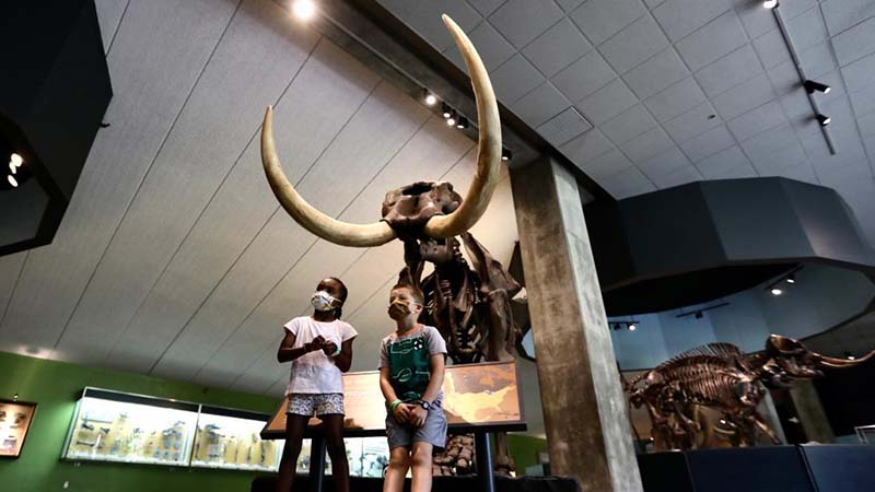 La Brea Tar Pits and Museum reopens in Los Angeles, U.S.