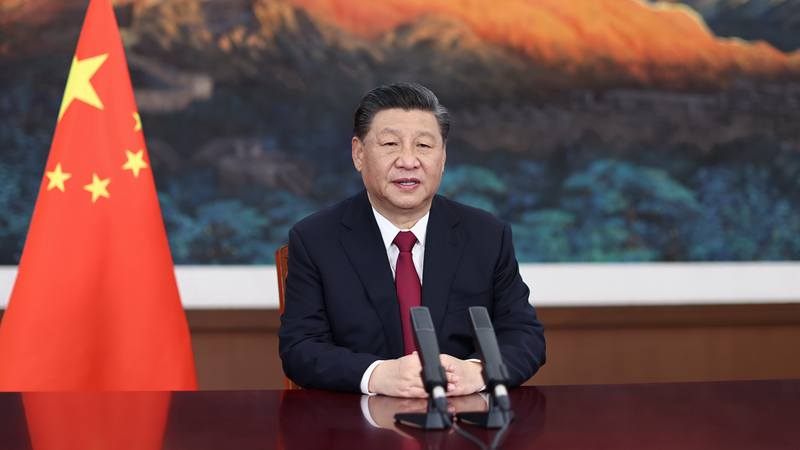 Xi's global governance remarks strike strong tone at Boao