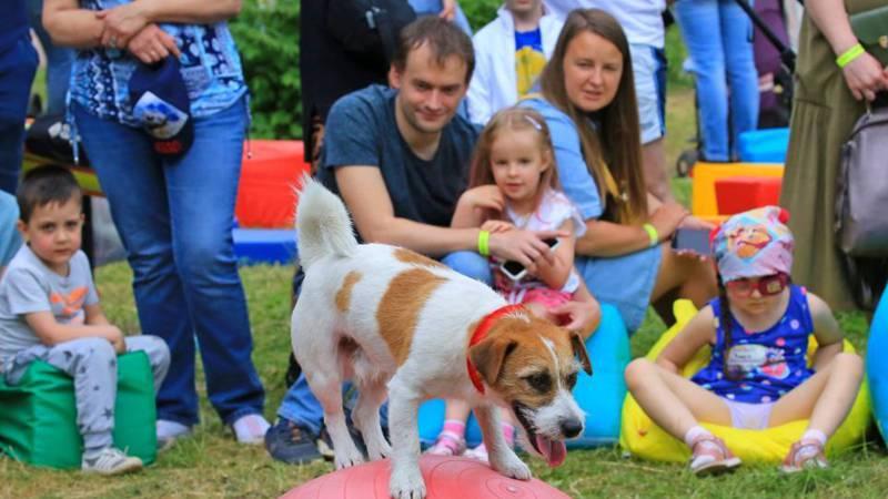 City picnic festival held in Minsk, Belarus